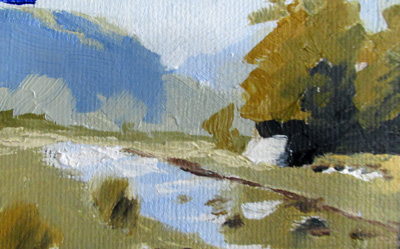 Limited Palette NZ 1