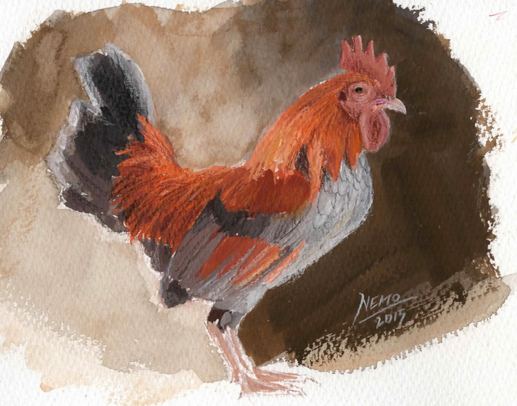 Gouache Rooster