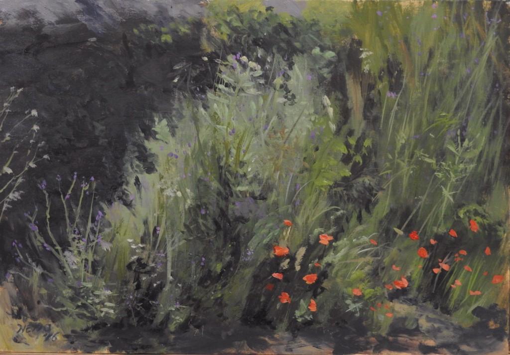 Sicilian Weeds - poppies