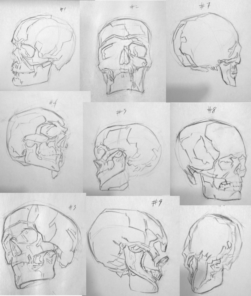 Skulls drawing studies with shadow mapping